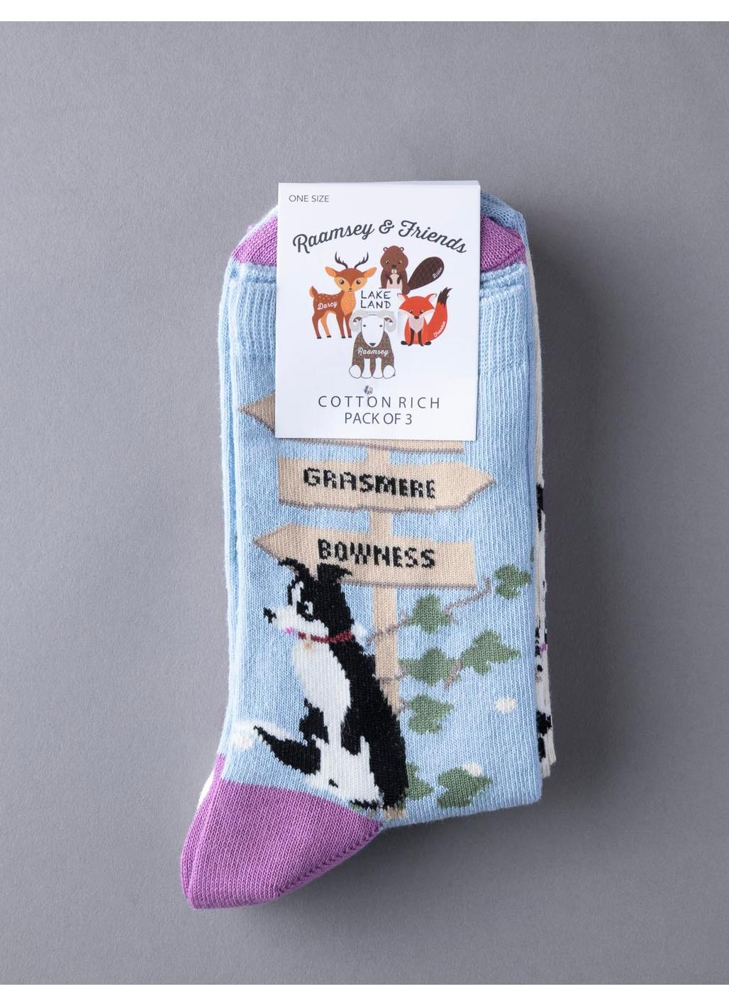 Three Pack - Sheepdog Socks in Multi