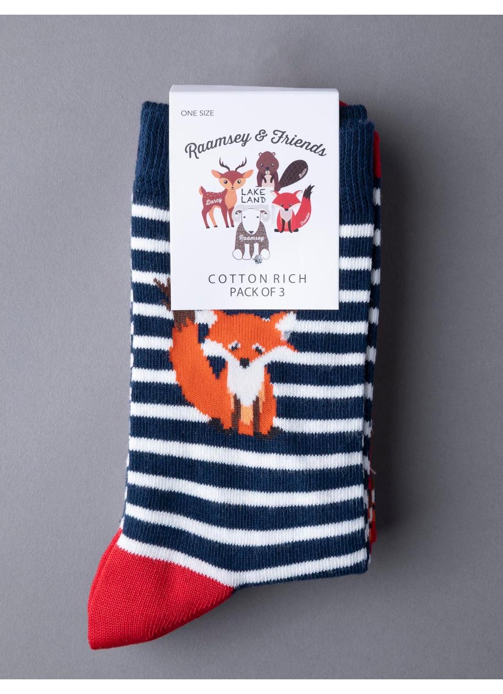 Three Pack - Frankie Fox Socks in Orange