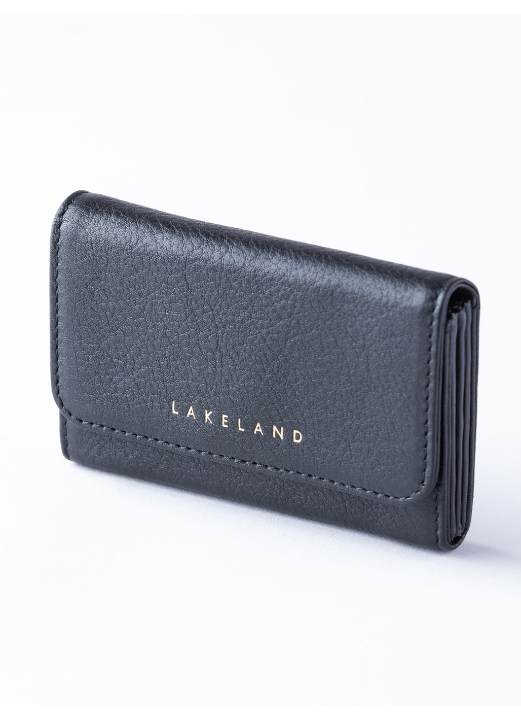Wray Leather Fan Card Holder in Black