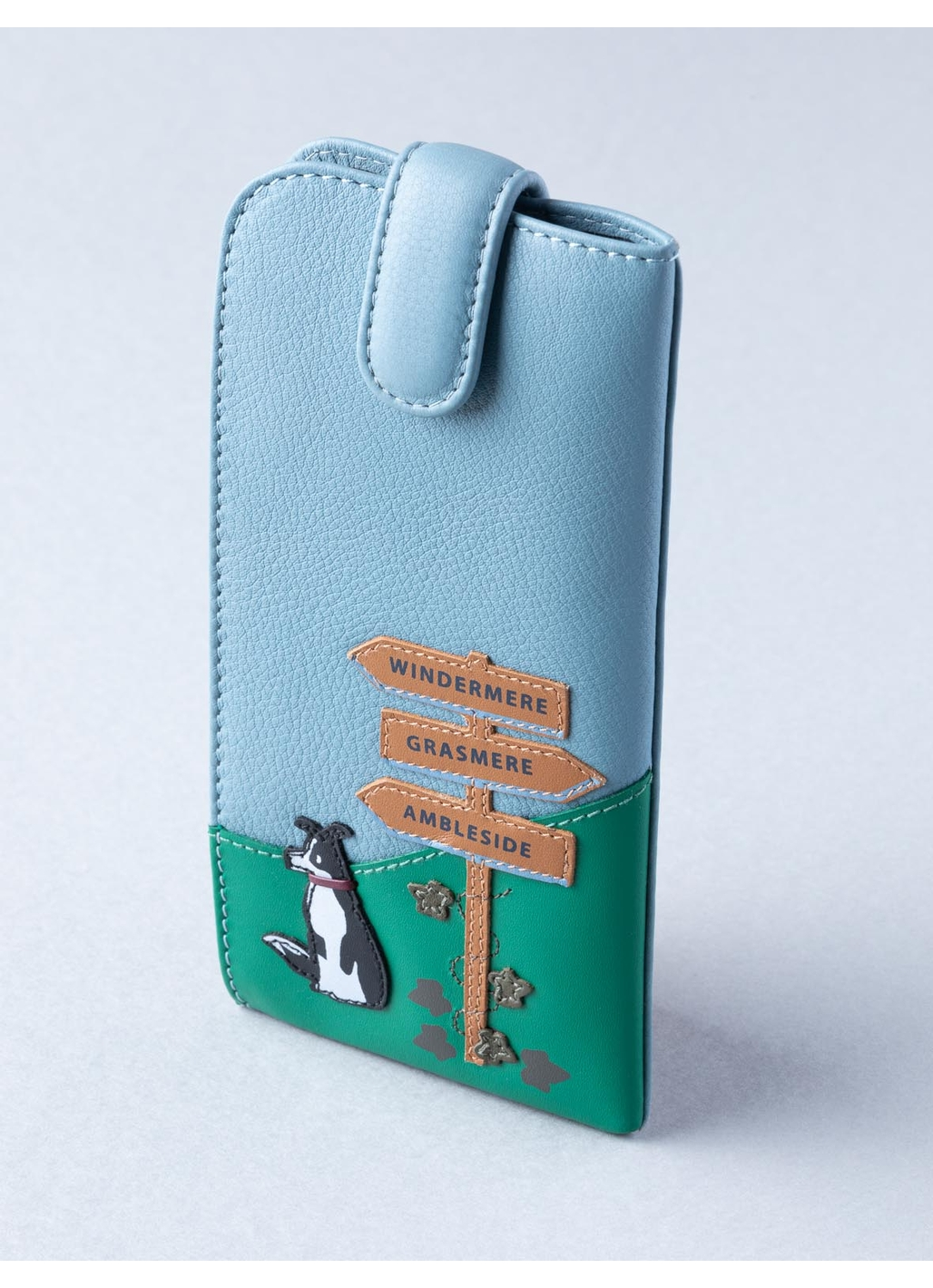 The Lakes Dog Walk Leather Glasses Case in Sky Blue